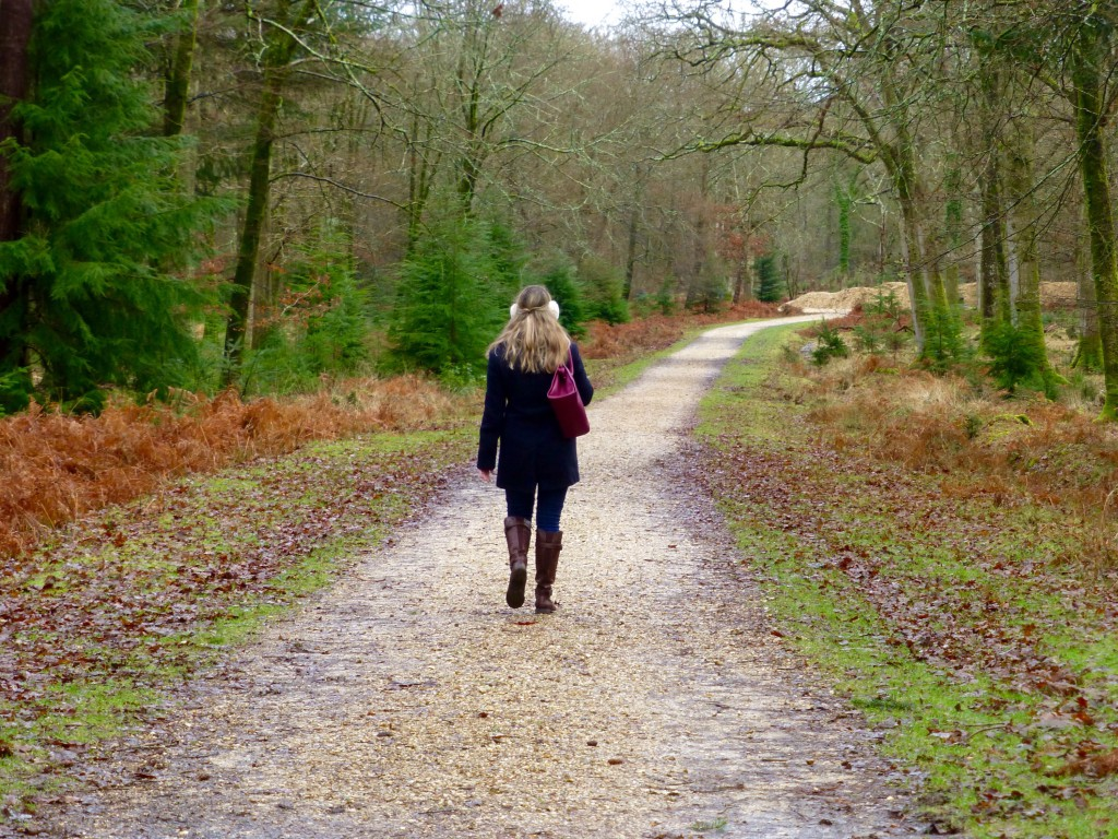 Walking in the New Forest off Rhinefield Ornamental Drive