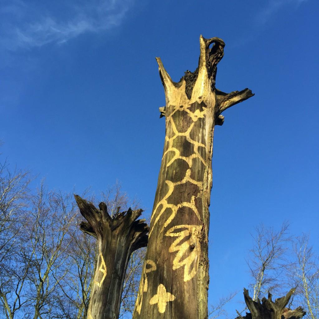Mottisfont National Trust artSouth giraffes