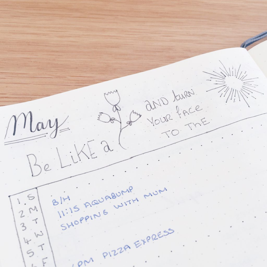 Bullet Journal monthly may