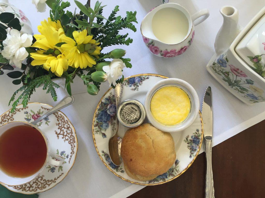 Cream tea at Saltram National Trust