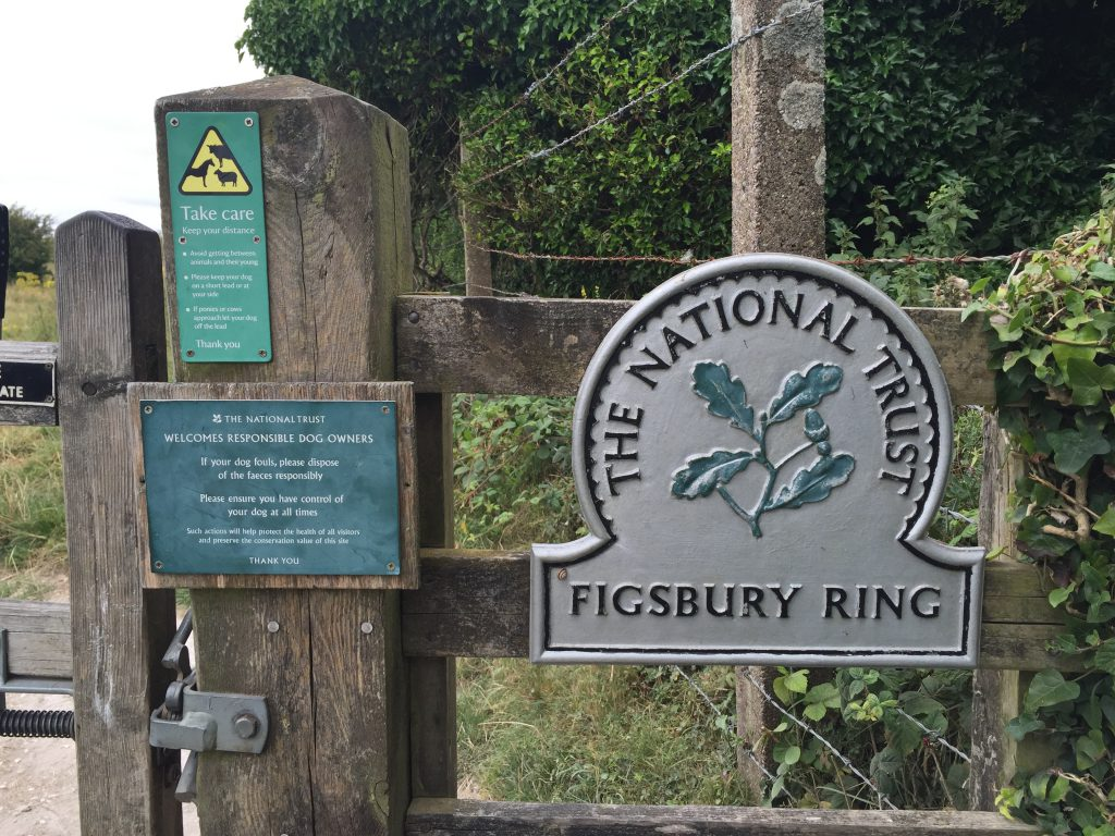 Figsbury Ring