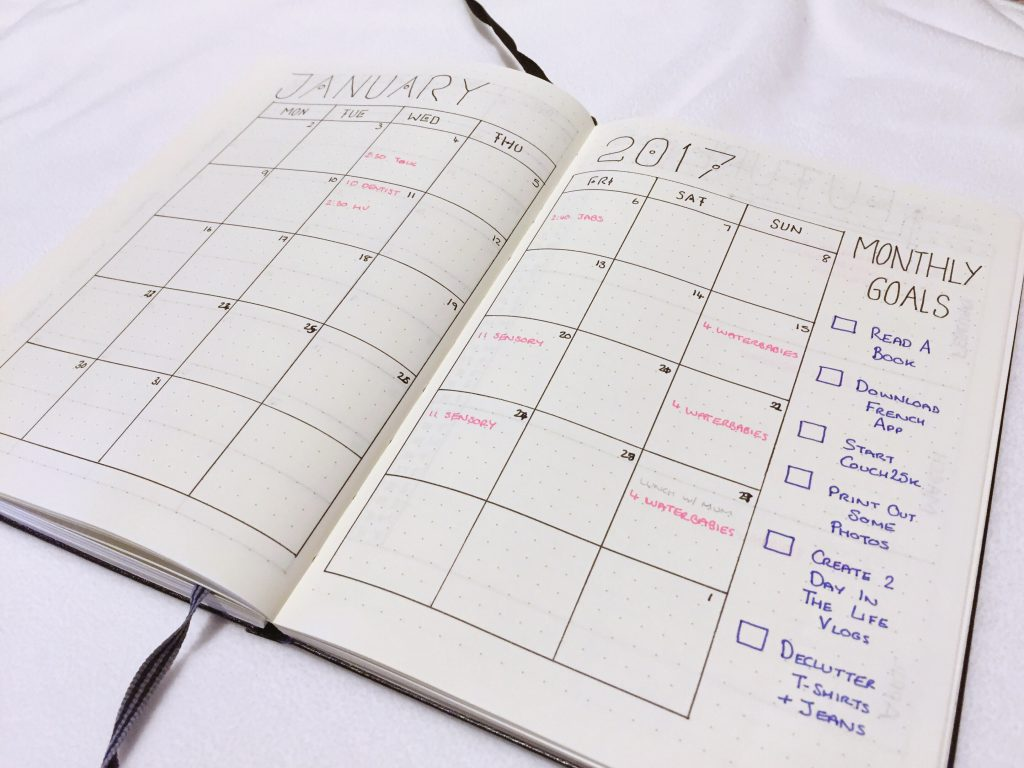 Bullet Journal 2017 monthly spread for january