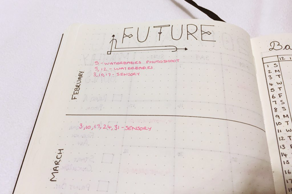 Bullet Journal 2017 future log