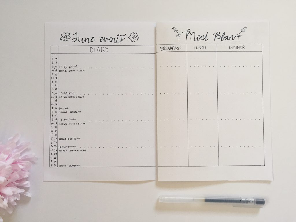 June bullet journal spread month overview and meal plan