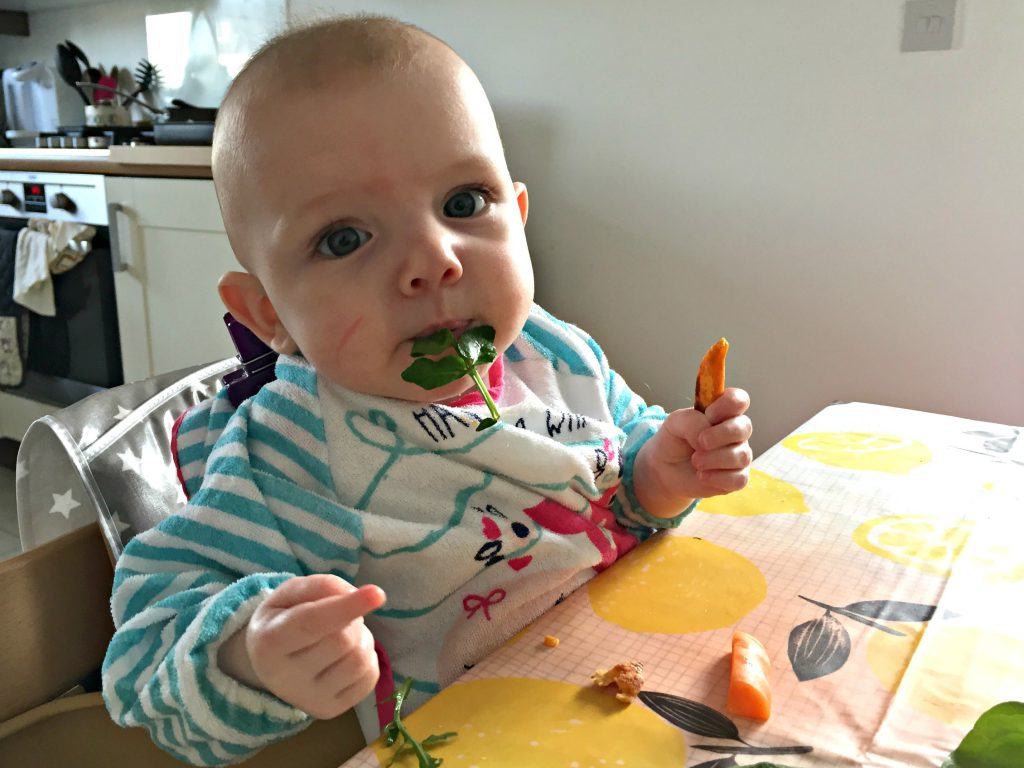 Baby led weaning essential products including these Sainsburys Tu long sleeved bibs and the alternative cushion for the Tripp Trapp