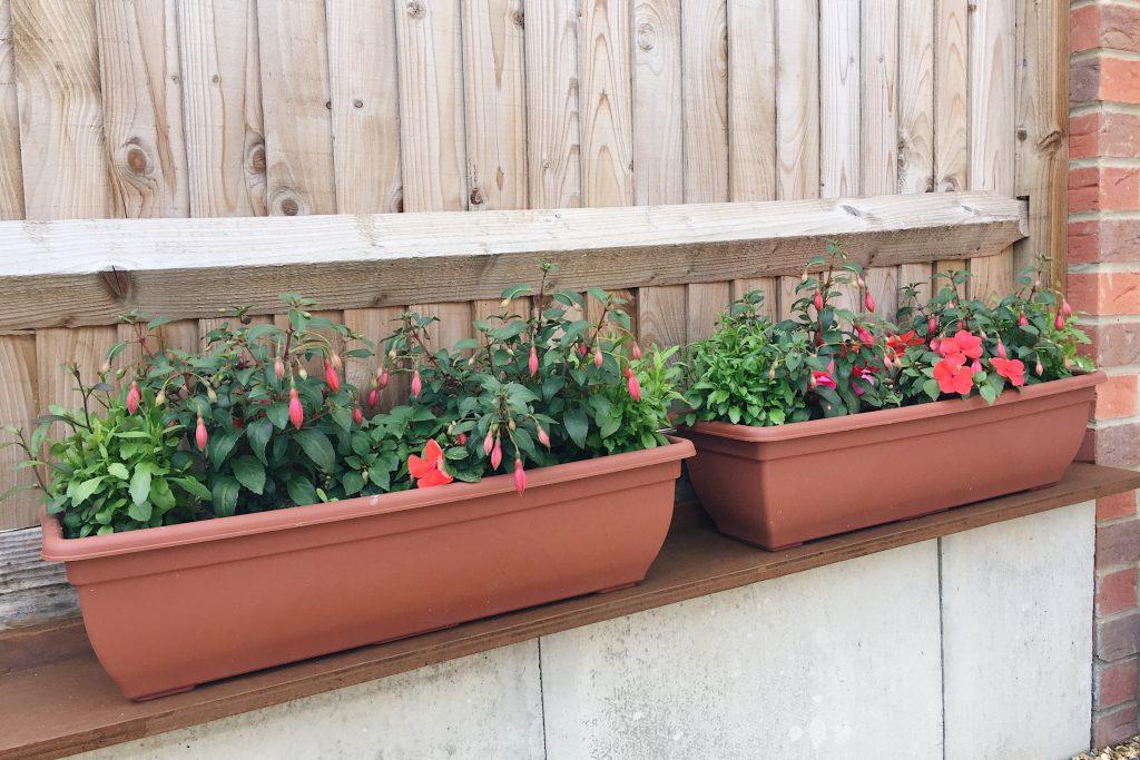 Flowers on a DIY shelf in the garden