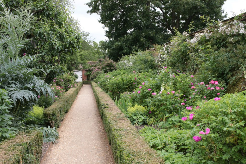 A day out at Mottisfont National Trust