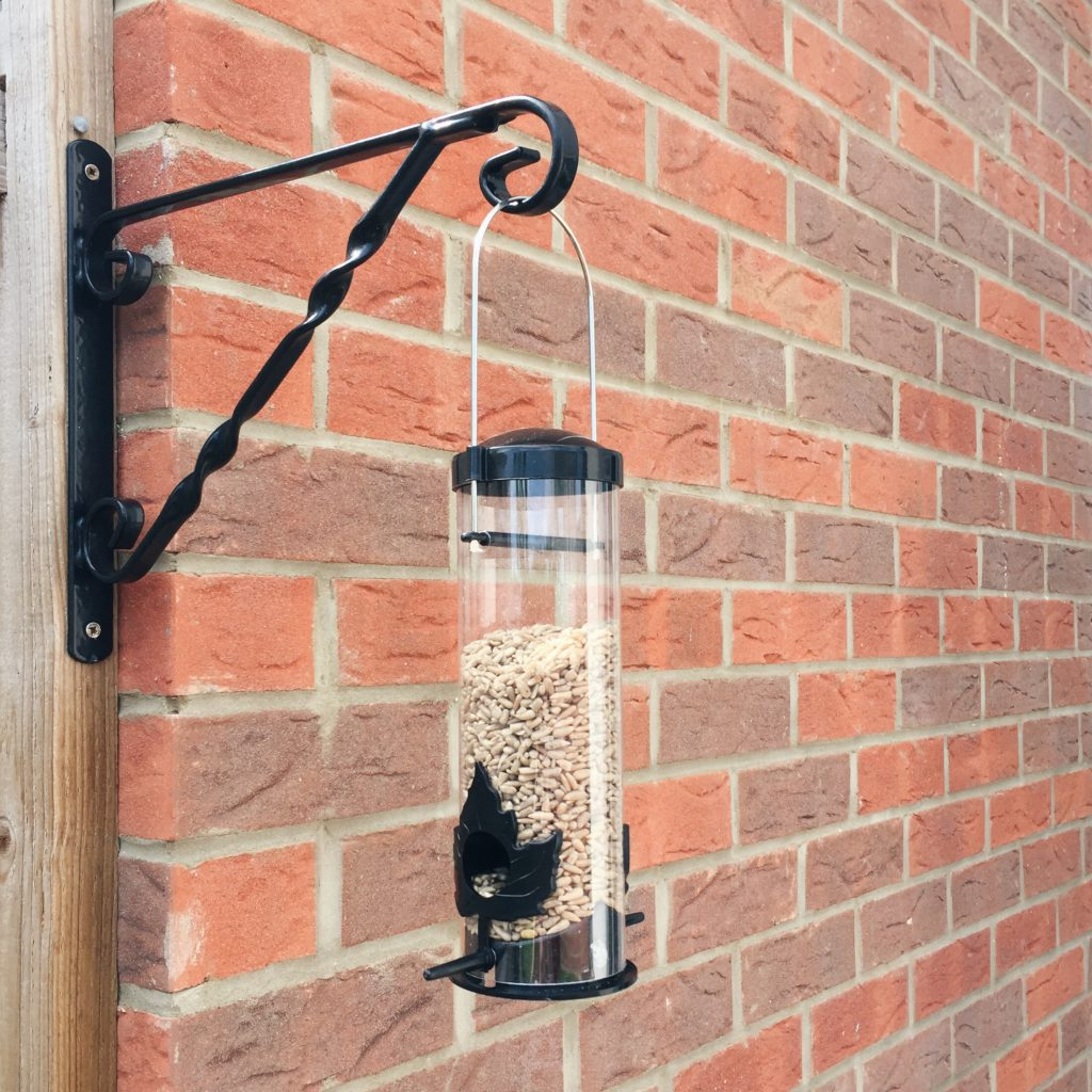Bird feeder in the garden
