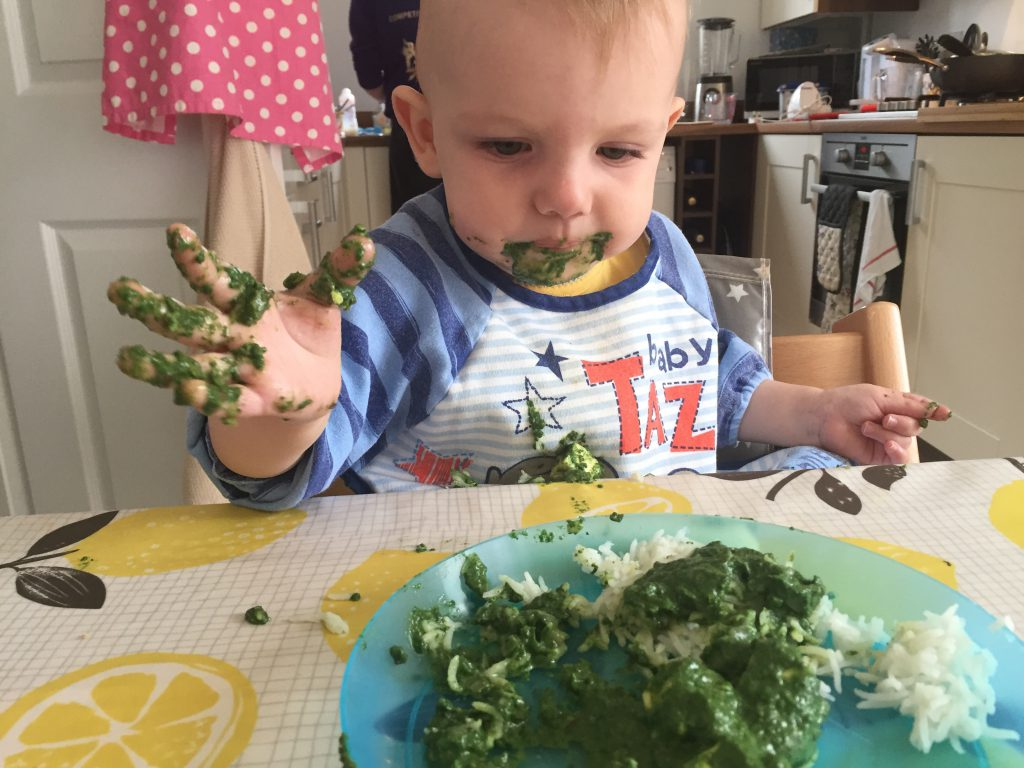 Saag Paneer from the Baby Led Weaning Cookbook