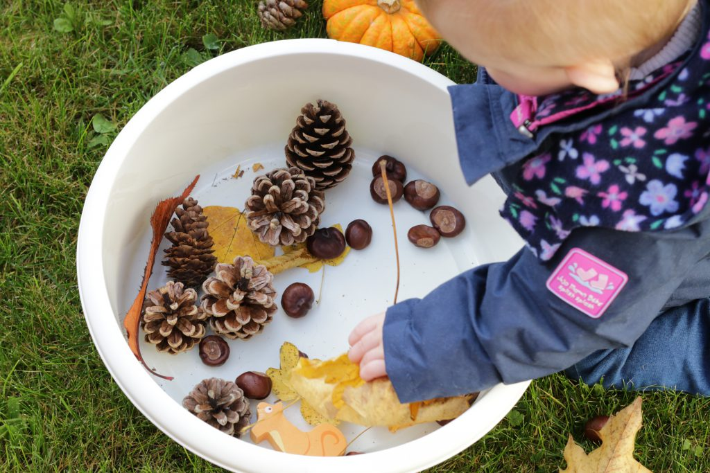 Autumn treasure basket for sensory play including pine cones, pumpkin, conkers and leaves.