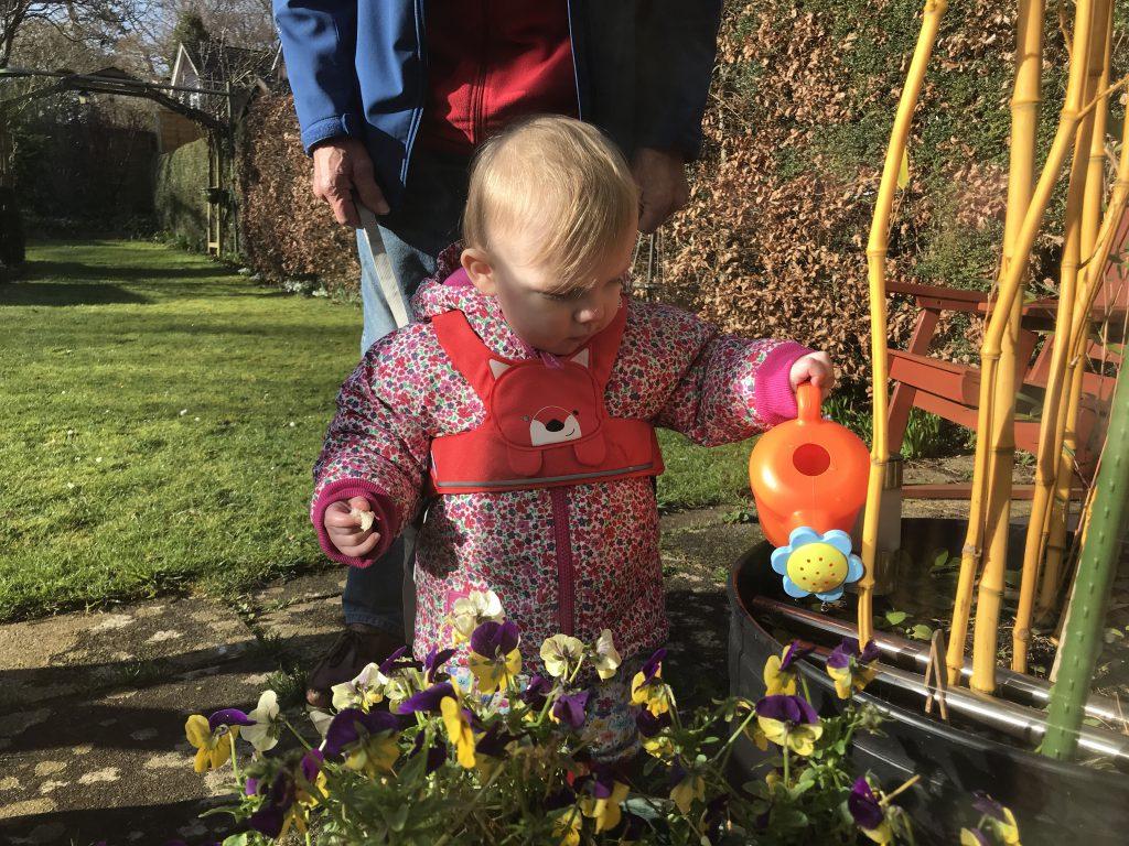 Eleanor watering the flowers in the garden