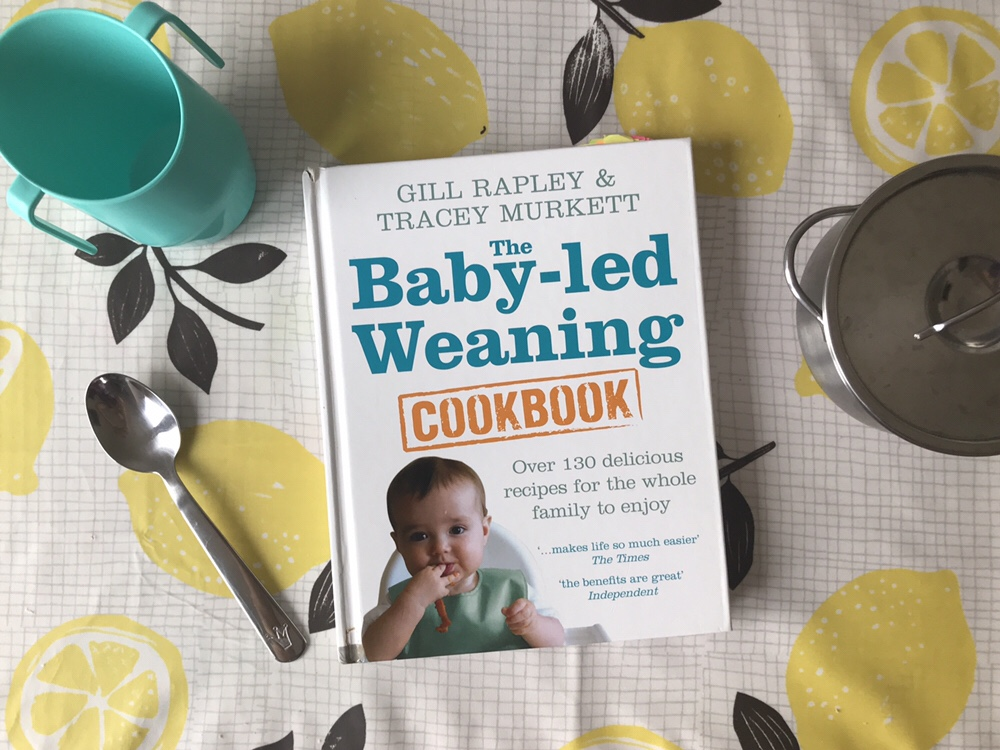 The Baby-Led Weaning Cookbook review